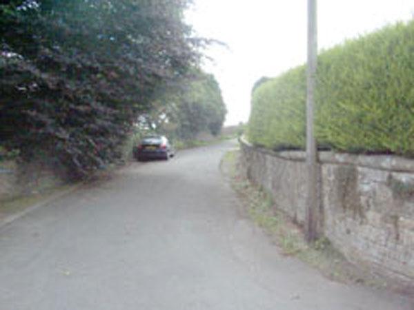 Back Lane 1