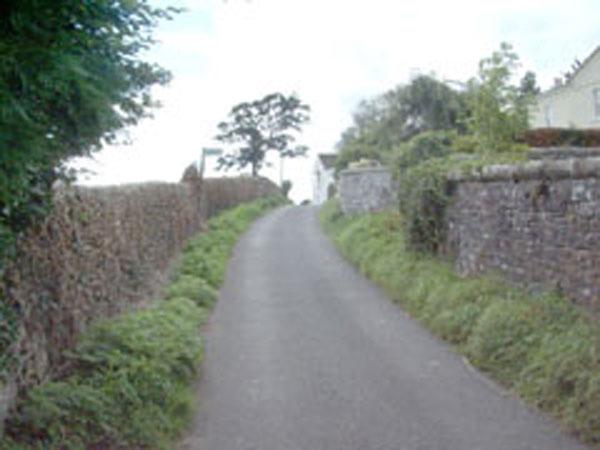 Back Lane 2