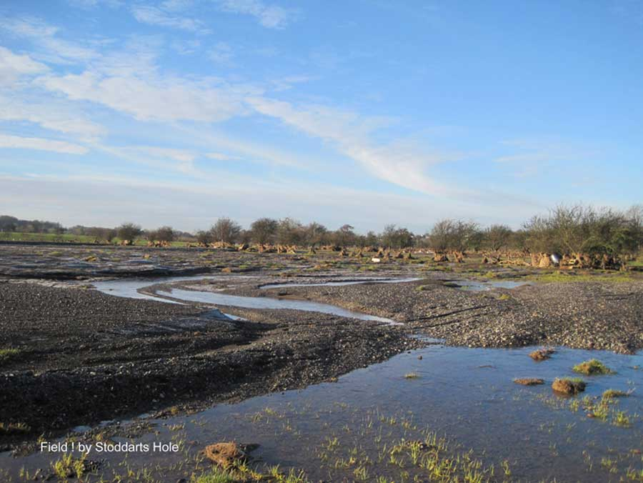 Field by Stoddarts Hole